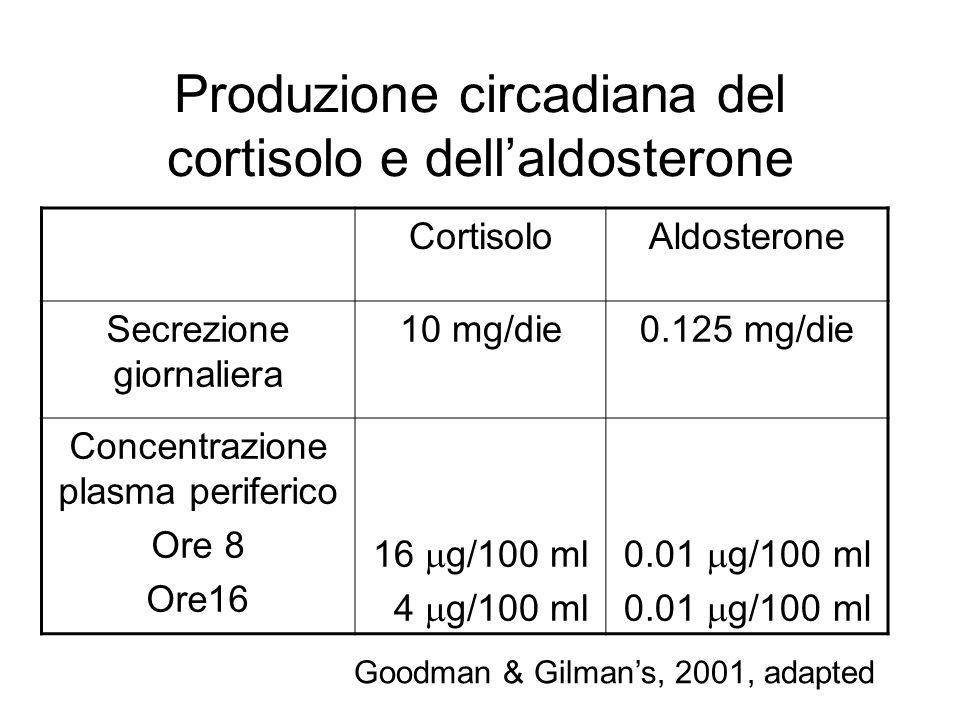 Produzione circadiana del cortisolo e dell'aldosterone