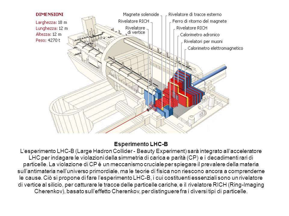 Esperimento LHC-B