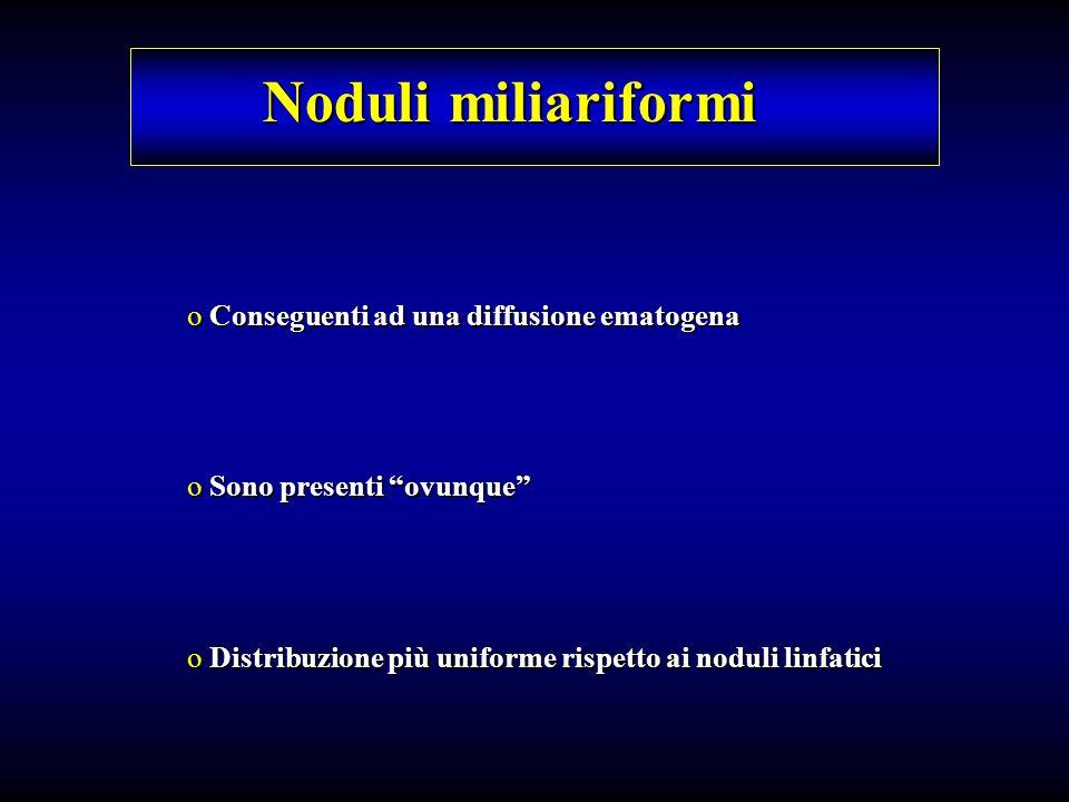Noduli miliariformi Conseguenti ad una diffusione ematogena