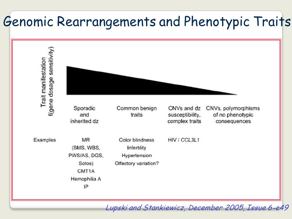 Genomic Rearrangements and Phenotypic Traits