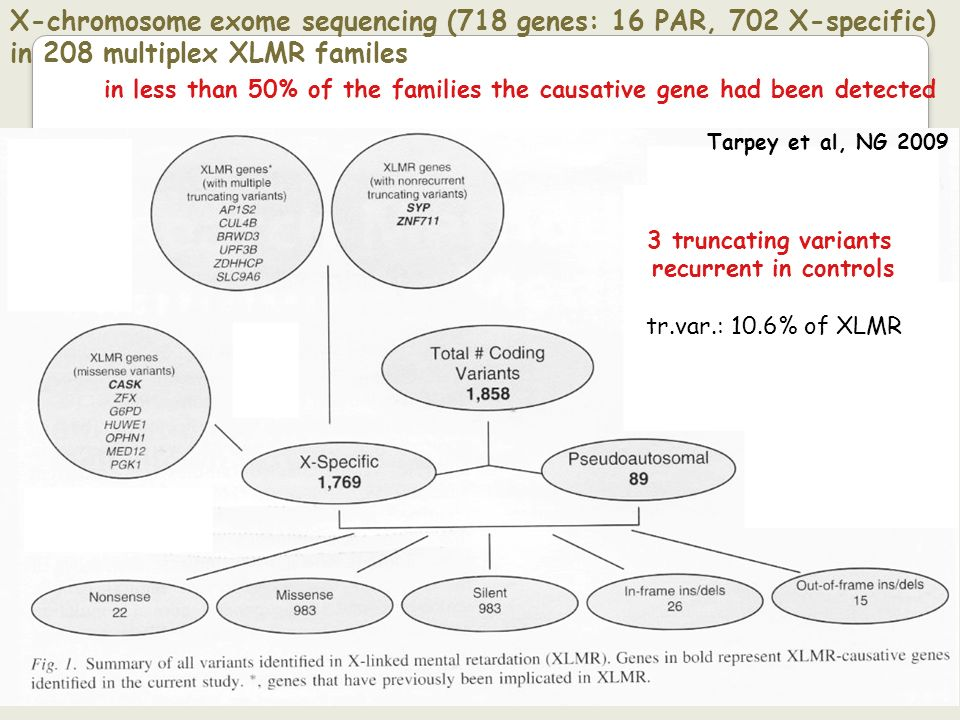 X-chromosome exome sequencing (718 genes: 16 PAR, 702 X-specific) in 208 multiplex XLMR familes
