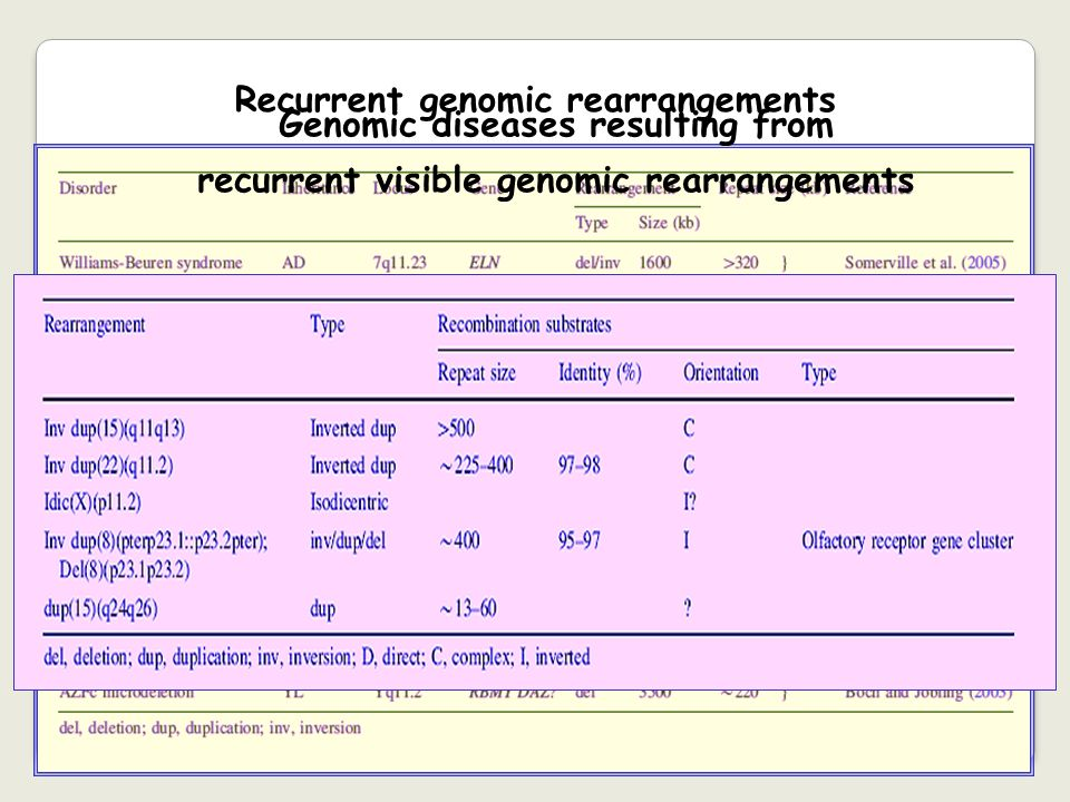 Recurrent genomic rearrangements Genomic diseases resulting from