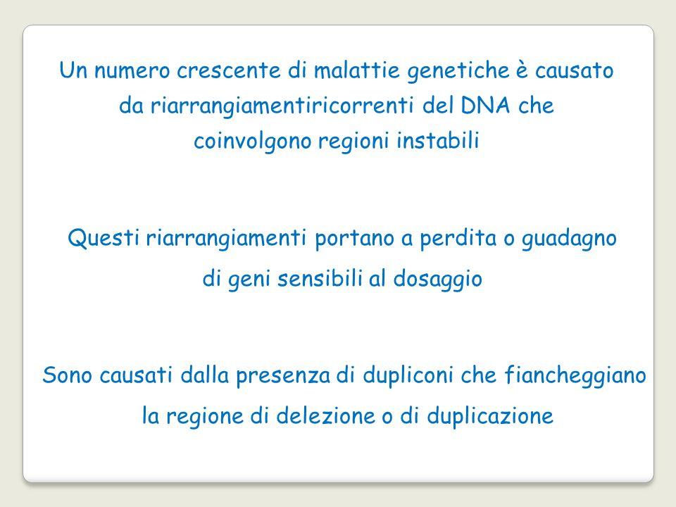 Un numero crescente di malattie genetiche è causato