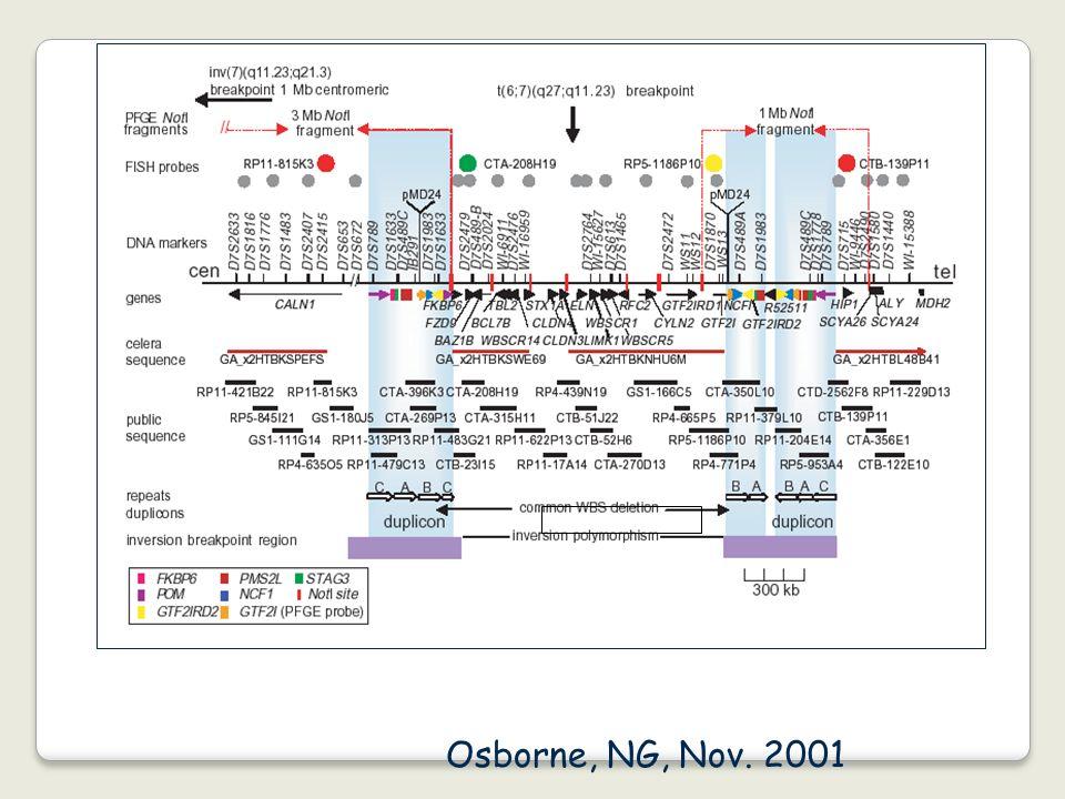 Osborne, NG, Nov. 2001
