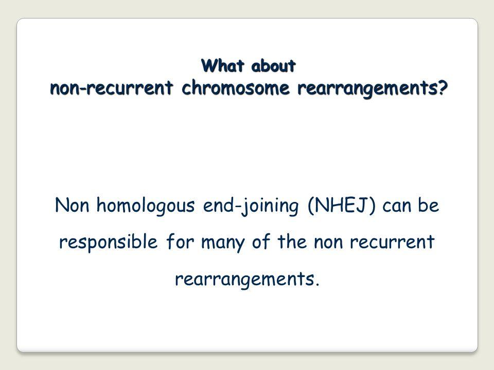 non-recurrent chromosome rearrangements