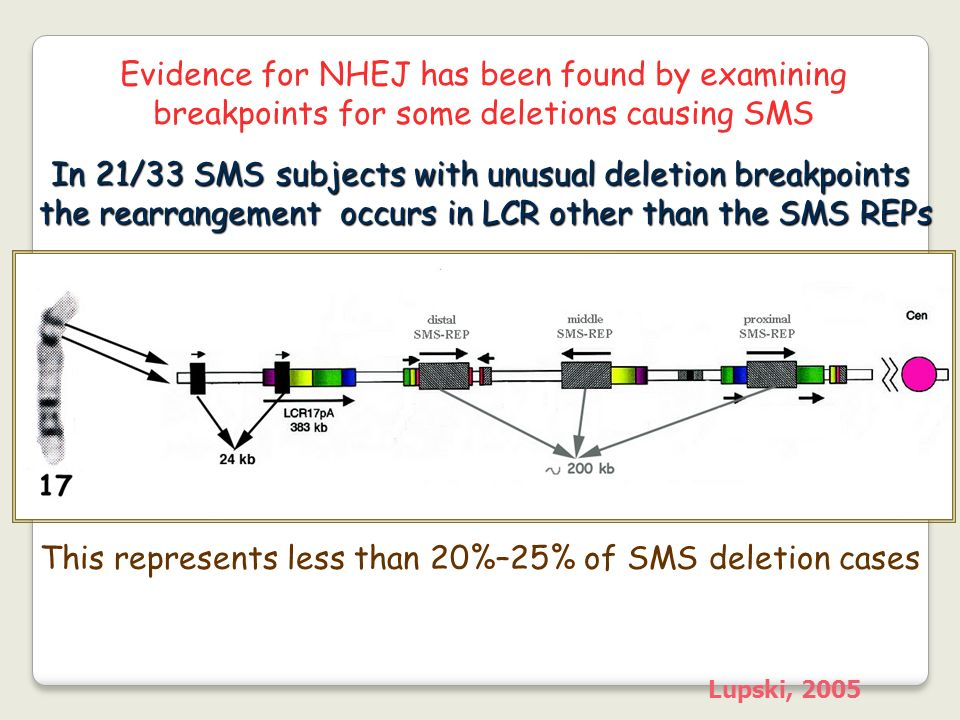 In 21/33 SMS subjects with unusual deletion breakpoints