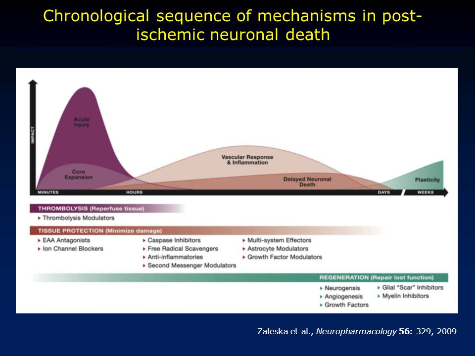 Chronological sequence of mechanisms in post-ischemic neuronal death