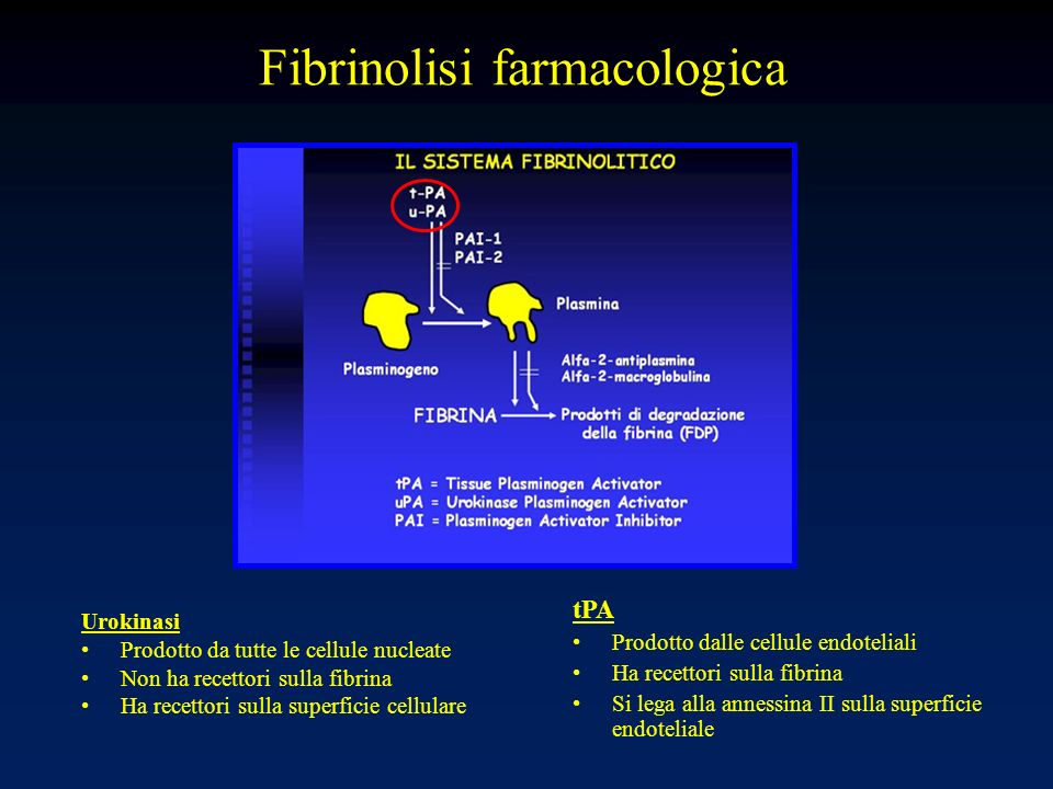 Fibrinolisi farmacologica