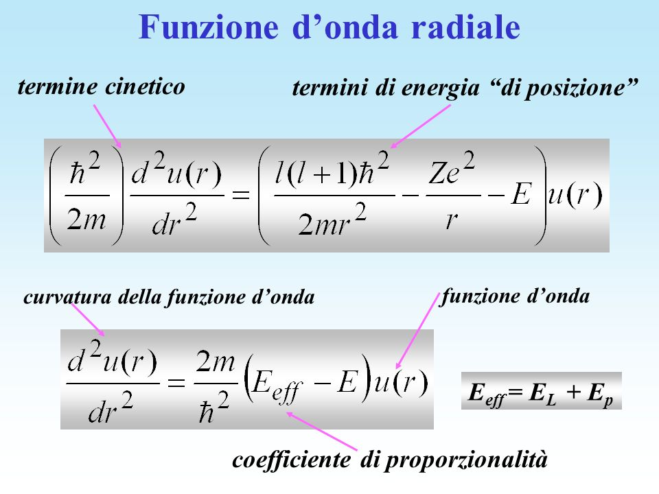 Funzione d'onda radiale