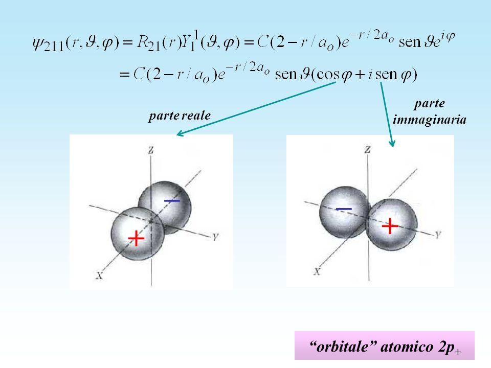 parte immaginaria parte reale + _ + _ orbitale atomico 2p+