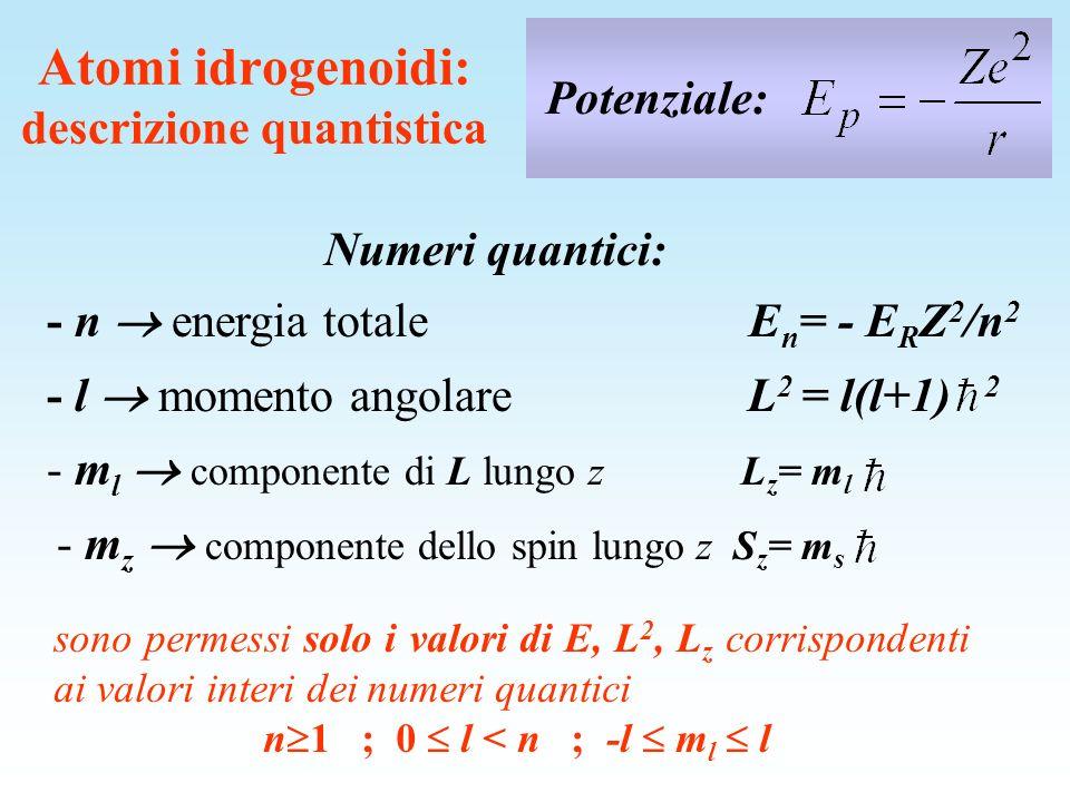 Atomi idrogenoidi: descrizione quantistica