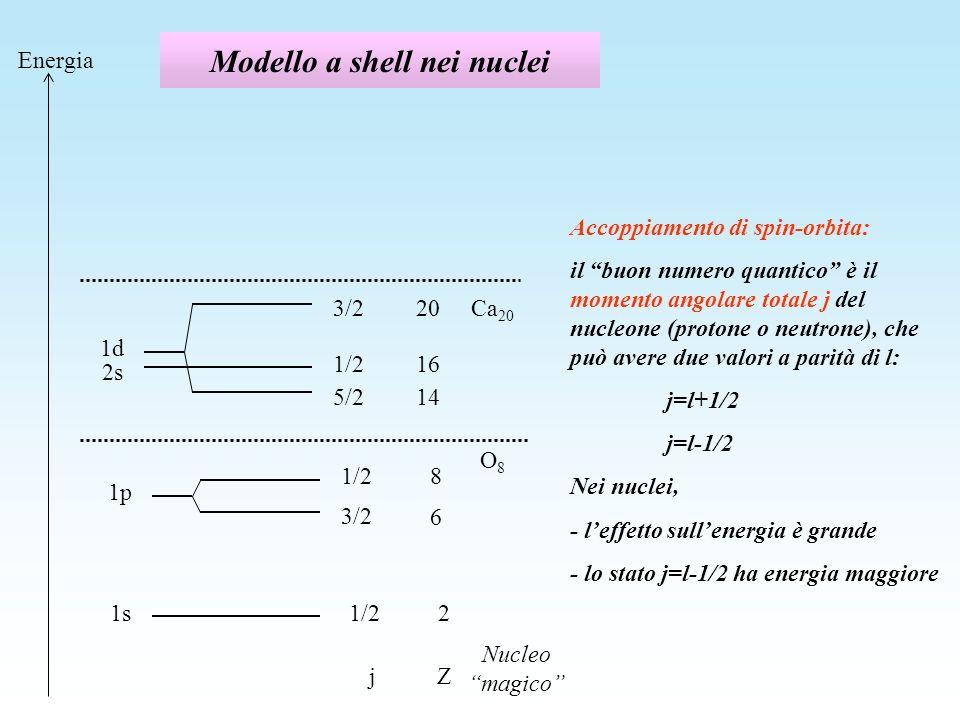 Modello a shell nei nuclei