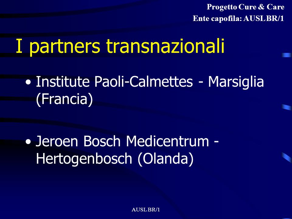 I partners transnazionali