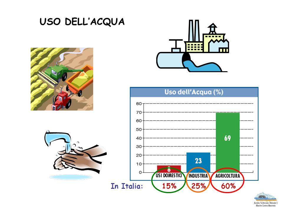 USO DELL'ACQUA In Italia: 15% 25% 60%
