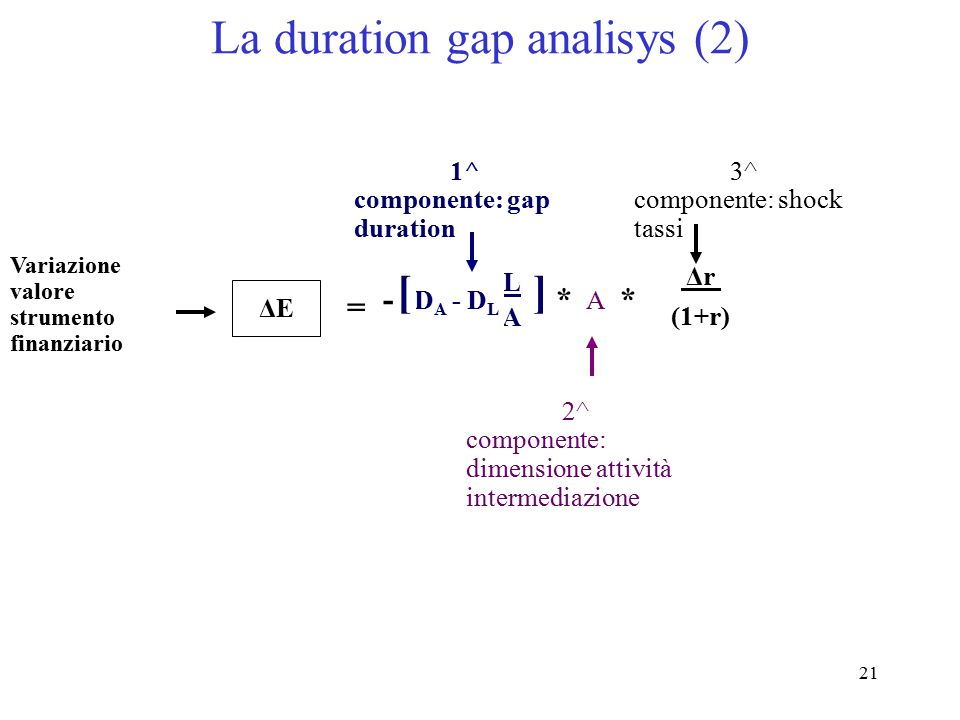 La duration gap analisys (2)