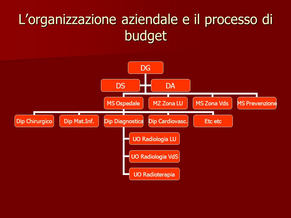 L'organizzazione aziendale e il processo di budget