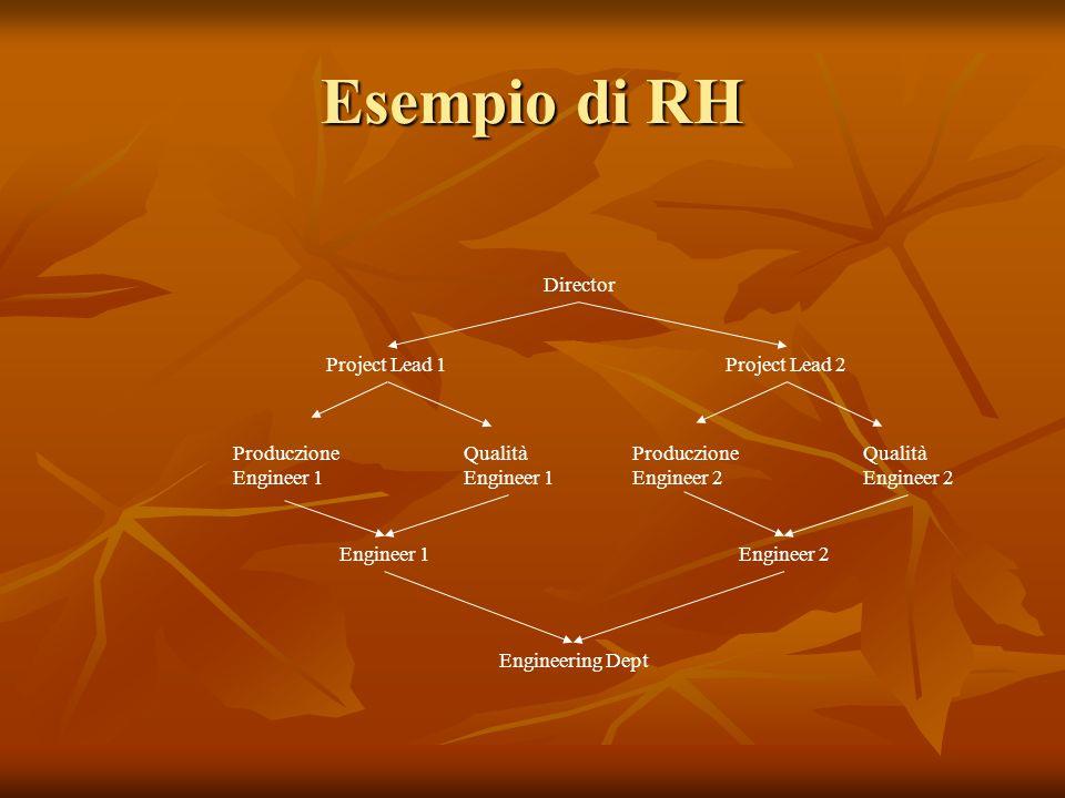 Esempio di RH Director Project Lead 1 Project Lead 2 Produczione