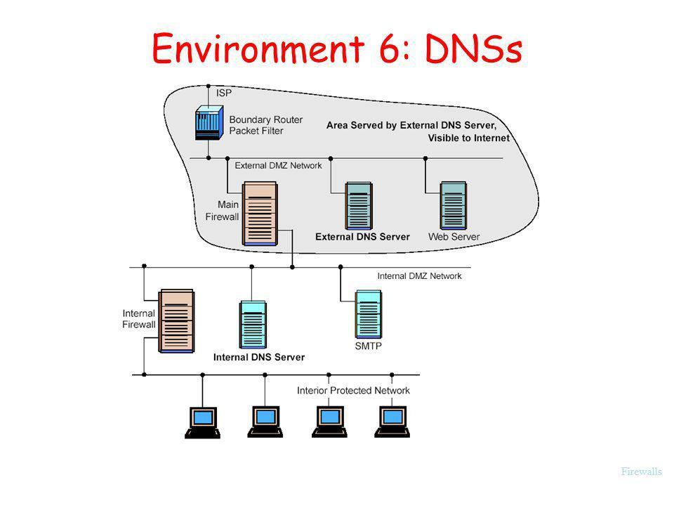 Environment 6: DNSs Firewalls