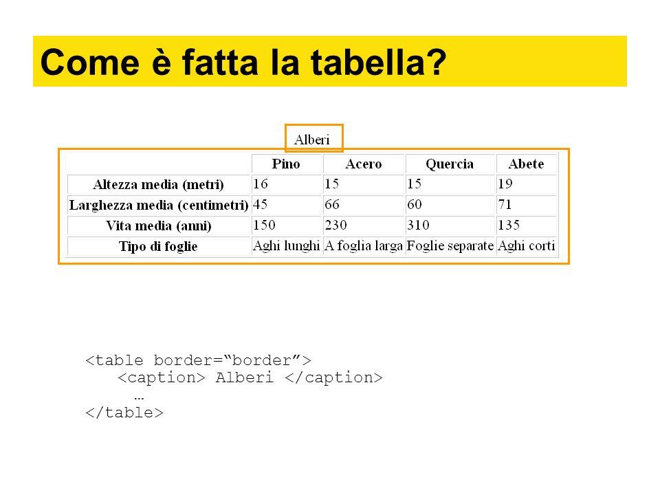 Come è fatta la tabella <table border= border >