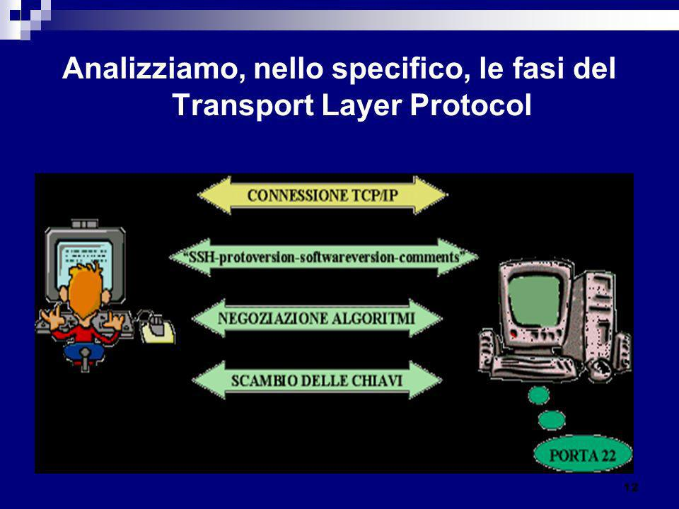 Analizziamo, nello specifico, le fasi del Transport Layer Protocol
