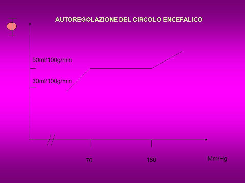 AUTOREGOLAZIONE DEL CIRCOLO ENCEFALICO