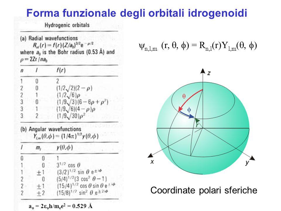 Forma funzionale degli orbitali idrogenoidi