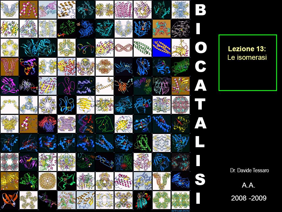 Lezione 13: Le isomerasi BIOCATALISI Dr. Davide Tessaro A. 2008 -2009