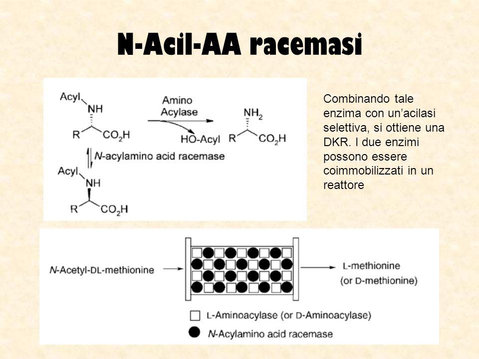 N-Acil-AA racemasi Combinando tale enzima con un'acilasi selettiva, si ottiene una DKR.