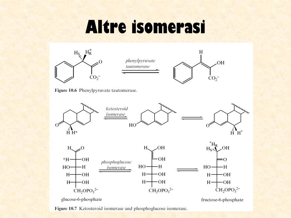 Altre isomerasi