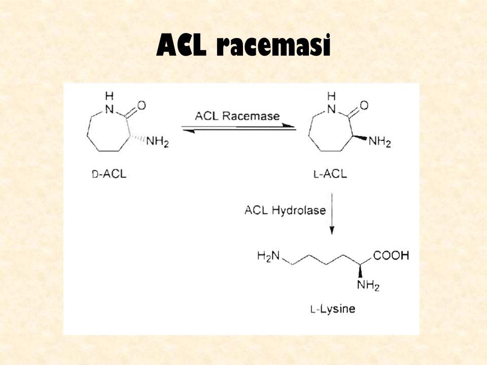 ACL racemasi