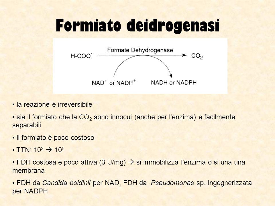 Formiato deidrogenasi