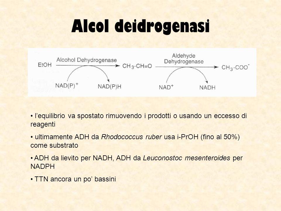 Alcol deidrogenasi l'equilibrio va spostato rimuovendo i prodotti o usando un eccesso di reagenti.