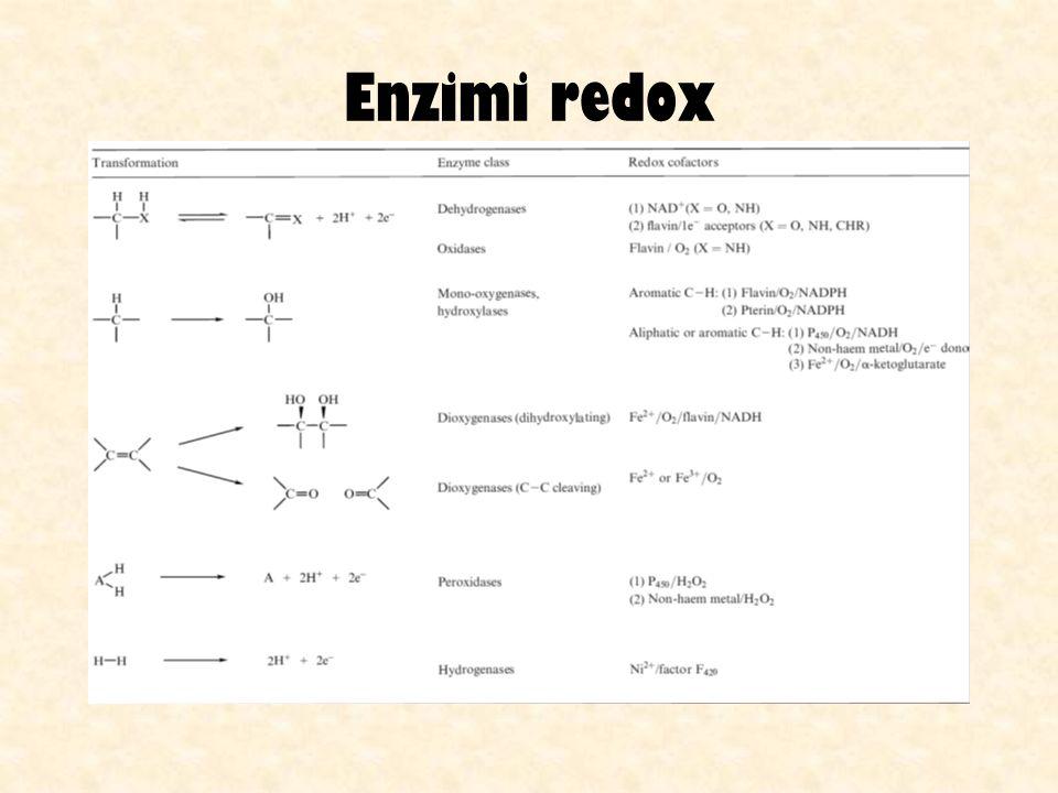 Enzimi redox