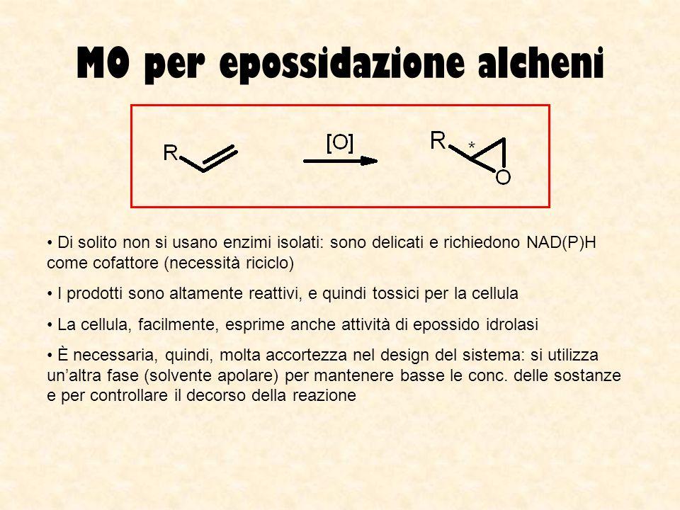 MO per epossidazione alcheni