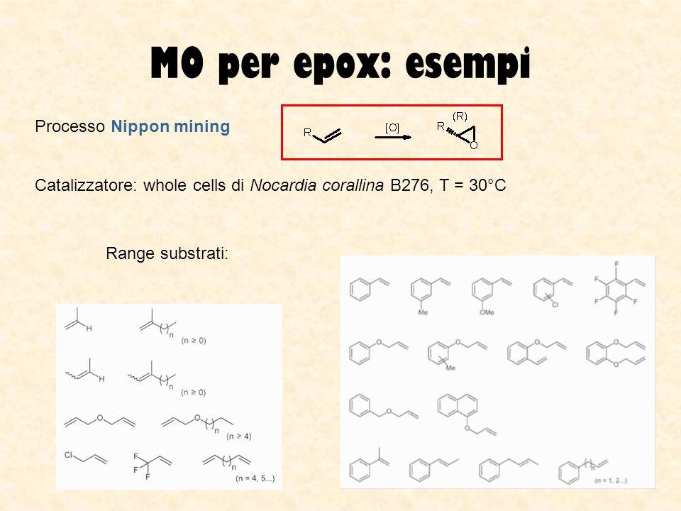 MO per epox: esempi Processo Nippon mining