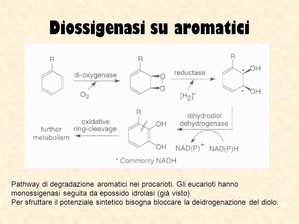 Diossigenasi su aromatici