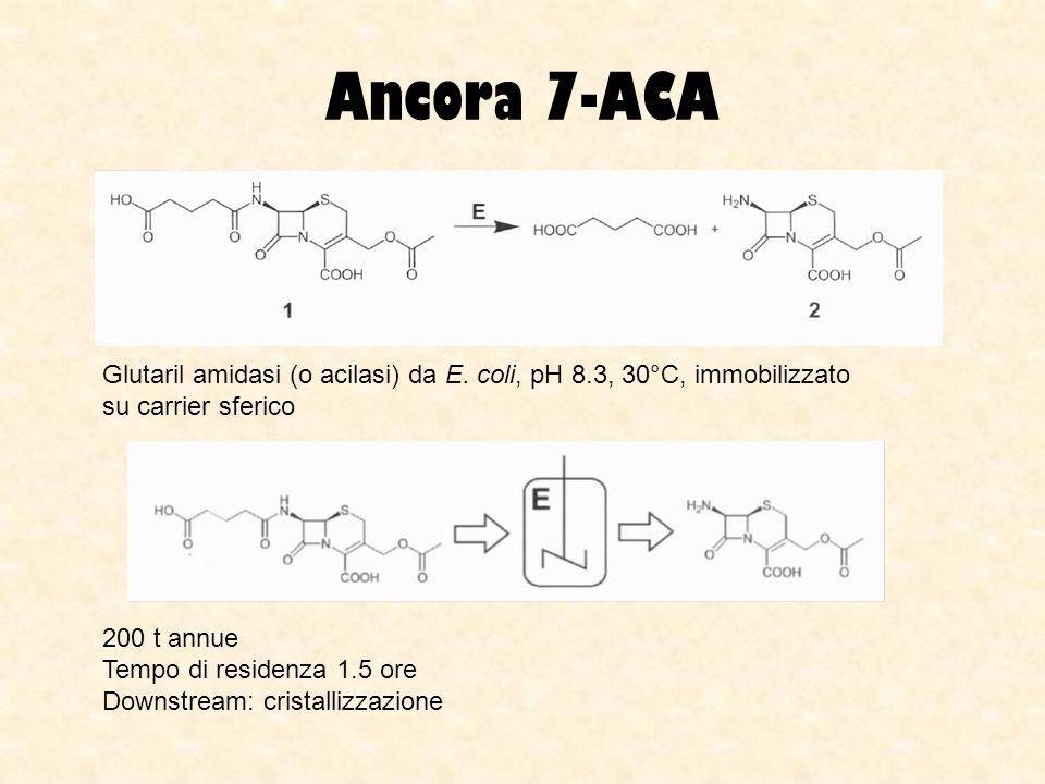 Ancora 7-ACA Glutaril amidasi (o acilasi) da E. coli, pH 8.3, 30°C, immobilizzato su carrier sferico.