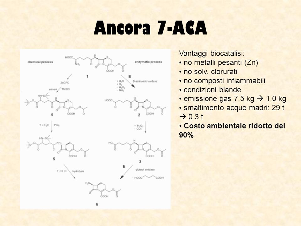 Ancora 7-ACA Vantaggi biocatalisi: no metalli pesanti (Zn)