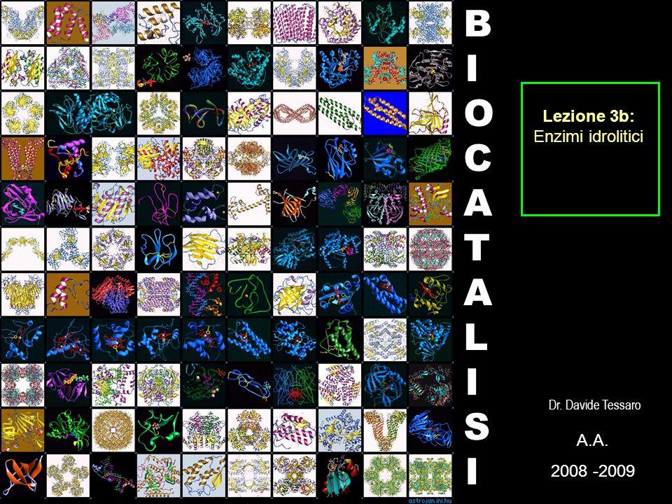 BIOCATALISI Lezione 3b: Enzimi idrolitici A. 2008 -2009