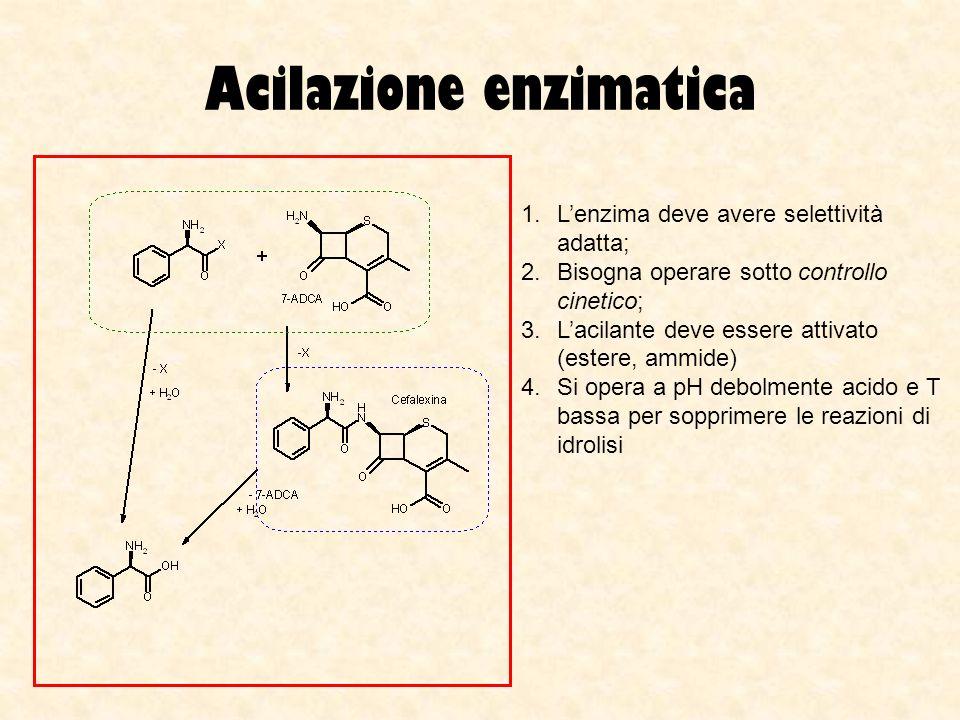 Acilazione enzimatica