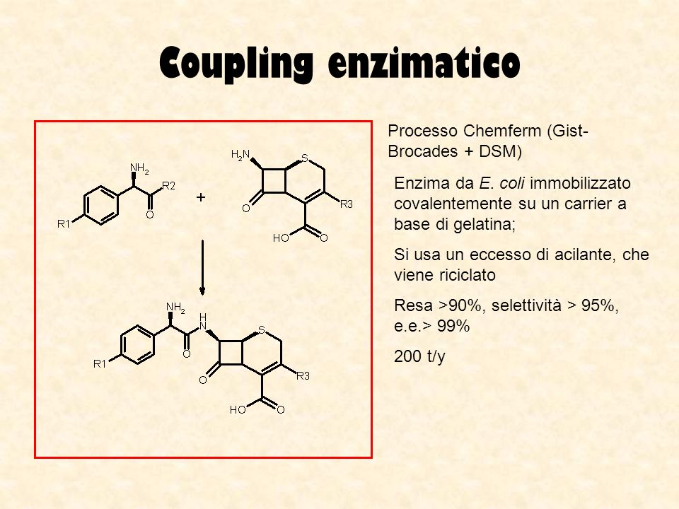 Coupling enzimatico Processo Chemferm (Gist-Brocades + DSM)