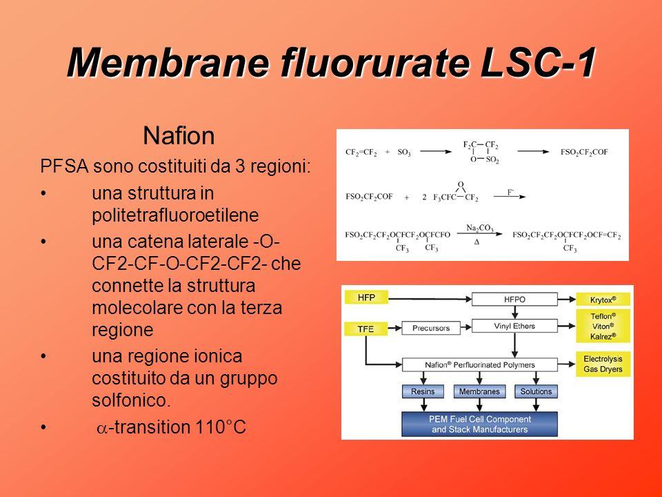 Membrane fluorurate LSC-1
