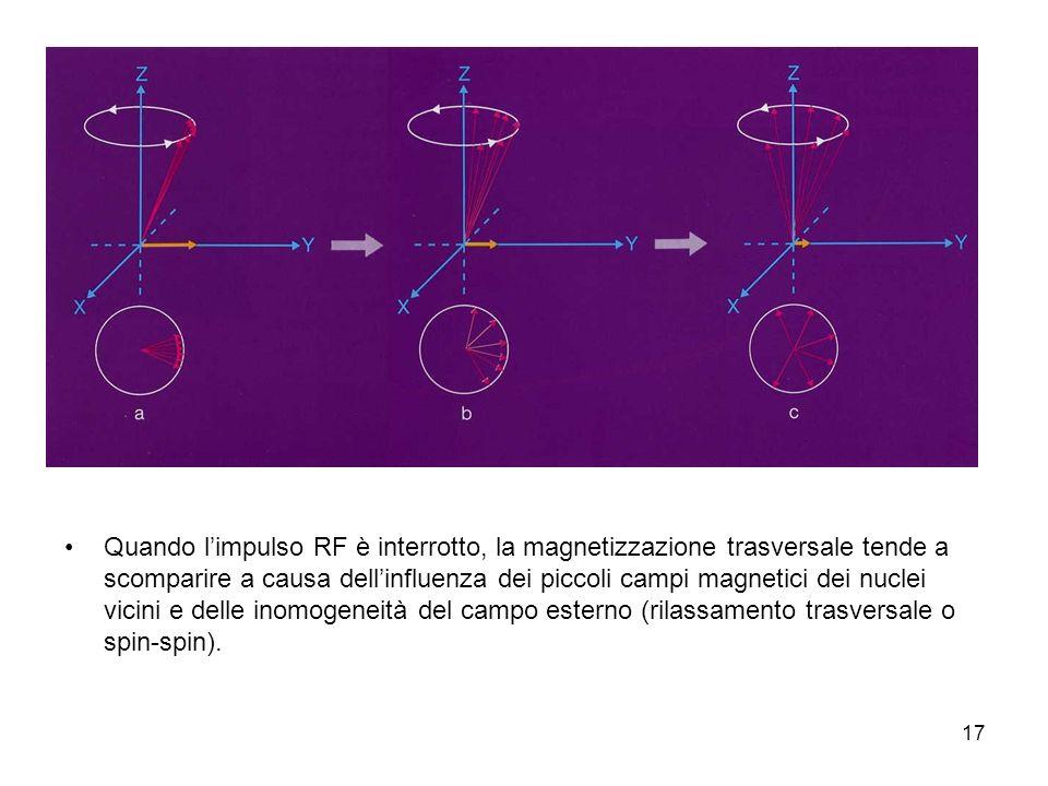 Quando l'impulso RF è interrotto, la magnetizzazione trasversale tende a scomparire a causa dell'influenza dei piccoli campi magnetici dei nuclei vicini e delle inomogeneità del campo esterno (rilassamento trasversale o spin-spin).
