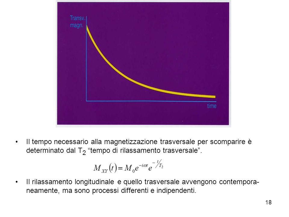 Il tempo necessario alla magnetizzazione trasversale per scomparire è determinato dal T2 tempo di rilassamento trasversale .