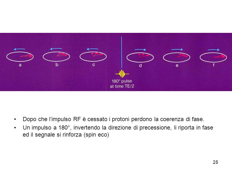 Dopo che l'impulso RF è cessato i protoni perdono la coerenza di fase.