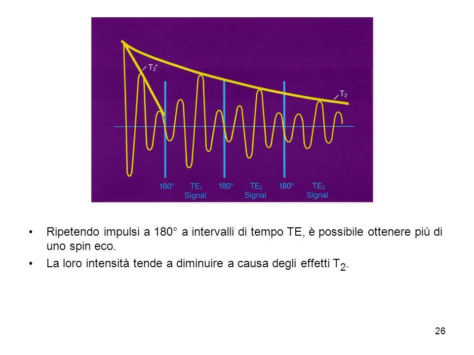 Ripetendo impulsi a 180° a intervalli di tempo TE, è possibile ottenere più di uno spin eco.
