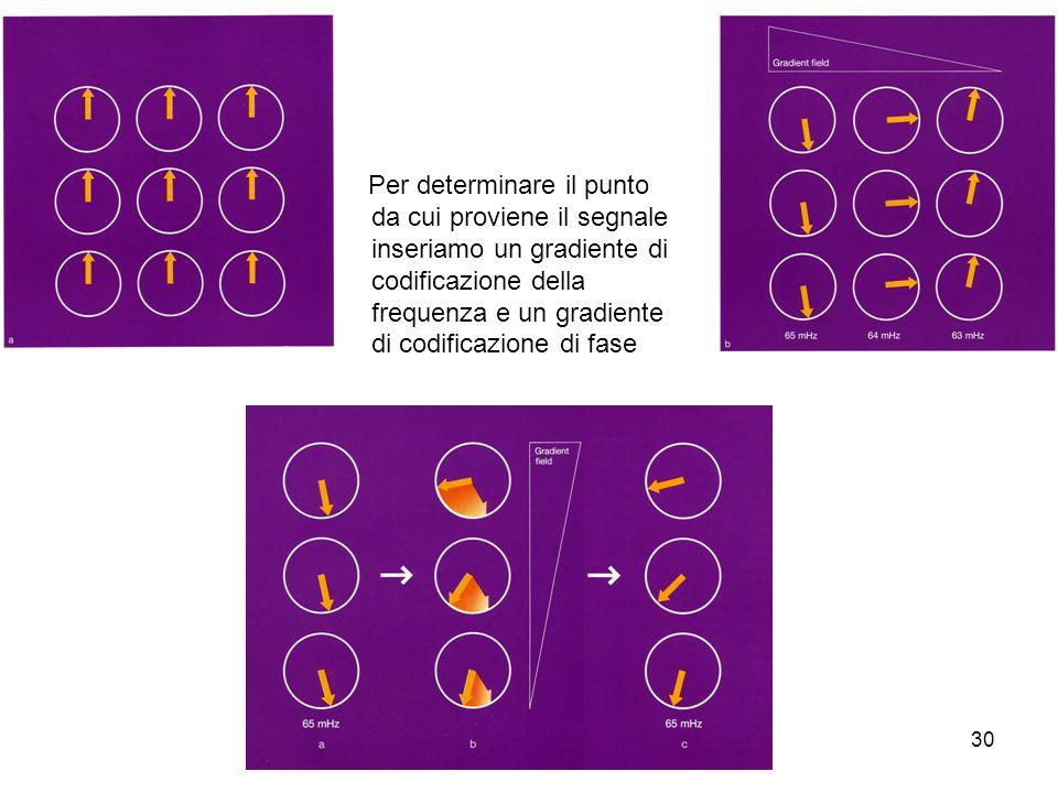 Per determinare il punto da cui proviene il segnale inseriamo un gradiente di codificazione della frequenza e un gradiente di codificazione di fase