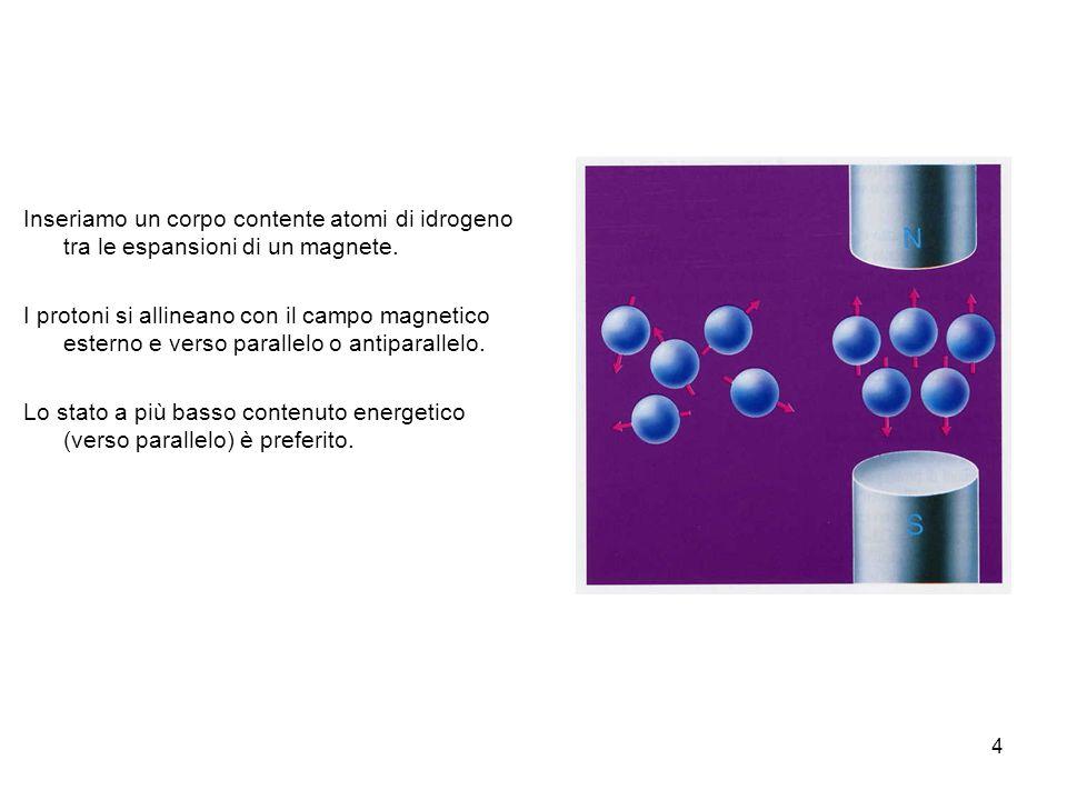 Inseriamo un corpo contente atomi di idrogeno tra le espansioni di un magnete.