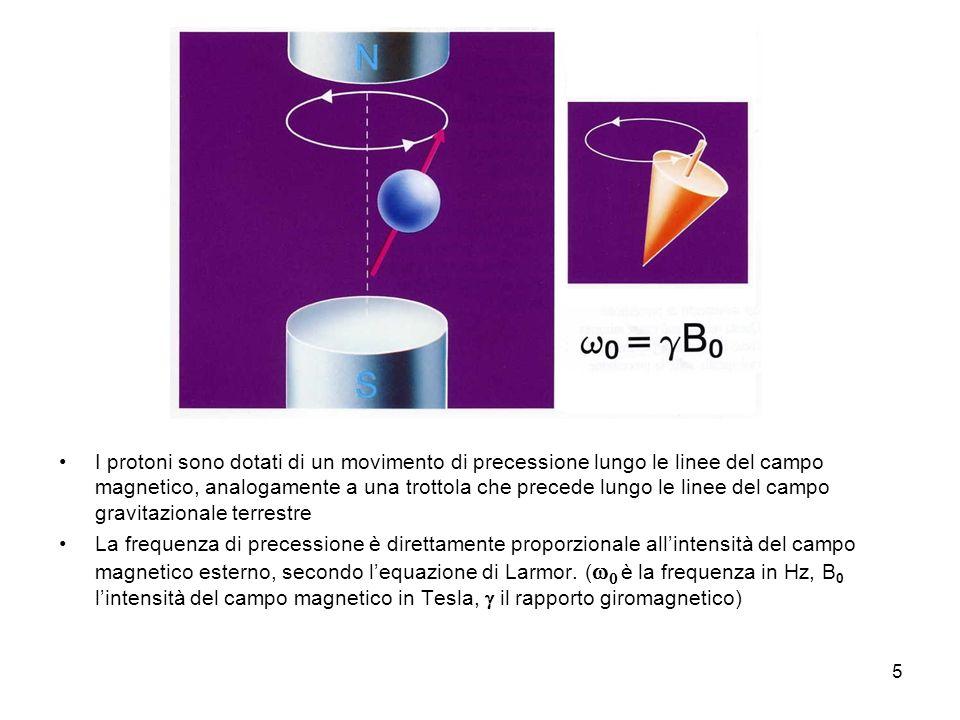 I protoni sono dotati di un movimento di precessione lungo le linee del campo magnetico, analogamente a una trottola che precede lungo le linee del campo gravitazionale terrestre