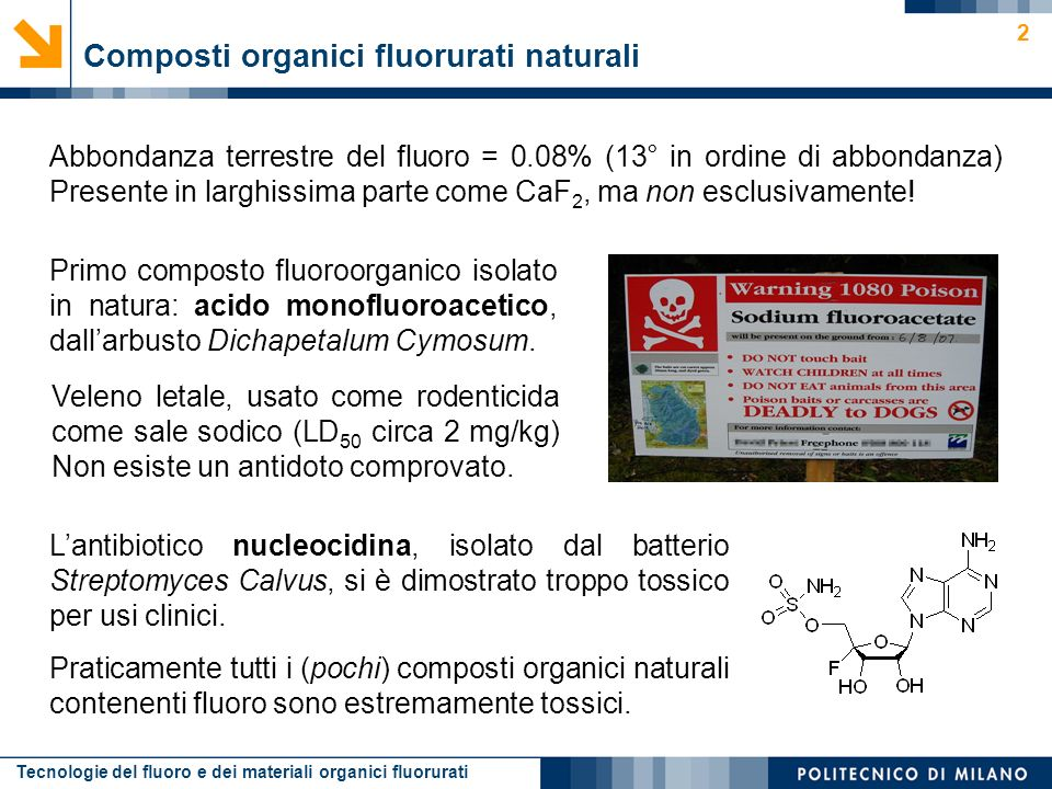 Composti organici fluorurati naturali